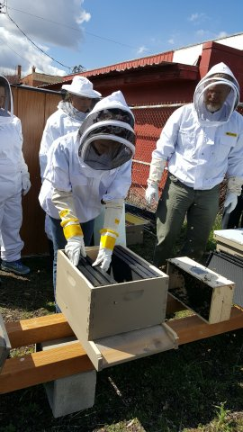 Hands On Class - Installing Bees 1 (3)